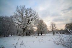 Schnee-Park im wolkigen Wetter Stockfotografie
