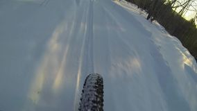 Schnee-radfahrender Hinterabfall in Kanada stock video