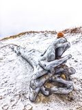 Schnee-Sand u. Treibholz stockfoto