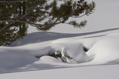 Schnee scape Lizenzfreie Stockfotos