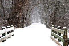 Schnee Schlagsidways in einem Park stockfotos