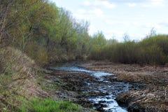 Schnee schmilzt und angesammeltes Schmelzwasser bildet einen Sumpf lizenzfreie stockbilder