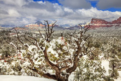 Schnee in Sedona Stockfotos