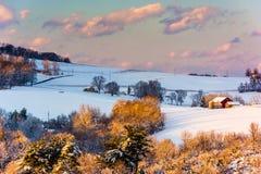 Schnee setzte Hügel und Bauernhofforderungen bei Sonnenuntergang, in ländlichem York Coun durch Stockfotografie