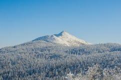 Schnee-Spitze Stockfoto
