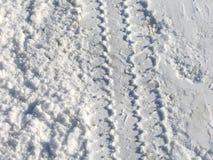 Schnee-Spuren Lizenzfreies Stockbild