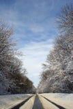 Schnee-Straße Lizenzfreie Stockfotografie