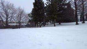 Schnee-Sturm-Blizzard im Vorort-allgemeinen Park Schneiende Natur-Szene im Vorstadtwohngebiet Snowy-Nordwetter szenisch stock video footage