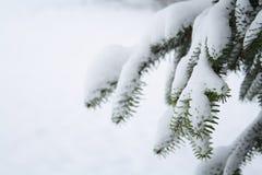 Schnee-Szene Stockfoto