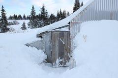 Schnee um den Huhnkorb Stockbild