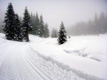 Schnee umfaßte Landschaft Stockbild
