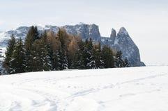Schnee umfaßte Landschaft Stockfotos