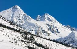 Schnee umfaßte Steigungen Stockfoto