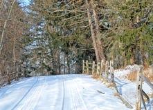 Schnee umfaßter Antrieb Stockbild