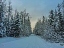 Schnee umfaßter Antrieb Lizenzfreies Stockfoto
