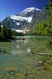 Schnee umfasste Spitze des Bergs Edith Cavell, Jasper National Park, C stockfotos