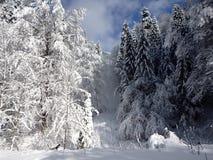 Schnee und blauer Himmel mit Wolken und Steuerknüppel Stockfotografie