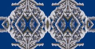 Schnee und Eis auf den Niederlassungen ist magisch Lizenzfreies Stockfoto