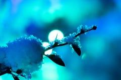 Schnee-und Eis-Lichter Stockbild