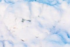 Schnee und Eiskristallhintergrund oder Beschaffenheit des russischen Parks des Waldes stockfotos