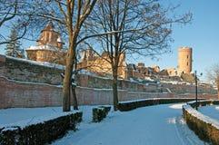 Schnee und gefrorener Zweig über Ruinen Stockfoto