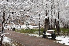 Schnee und Gras auf Park lizenzfreies stockfoto