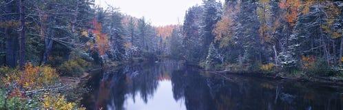 Schnee- und Herbstbäume Lizenzfreies Stockbild