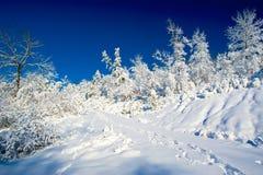 Schnee und Himmel, Weiß und Blau Lizenzfreies Stockbild