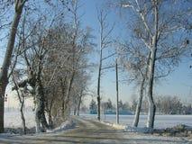 Schnee und Wolken lizenzfreies stockfoto