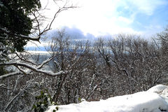 Schnee vor Weihnachten Stockfotografie