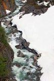 Schnee-Wasserfall-Landschaft Stockbilder