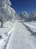 Schnee-Weg für Skilanglauf Stockfotos
