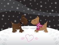 Schnee-Welpen-Liebe Lizenzfreie Stockfotografie