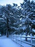 Schnee-Zaun Stockfotos