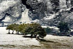 Schneeansicht des tibetanischen Dorfs am Shangri-La China Lizenzfreies Stockbild