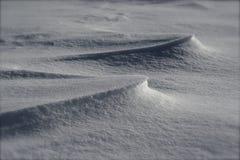 Schneeantrieb Lizenzfreie Stockfotos