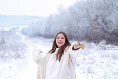 Schneeballspiel Spielen mit Schnee und Haben des Spa?es im Winterpark L?chelndes M?dchen der T?tigkeit in der Winterreise Schneeb lizenzfreie stockbilder