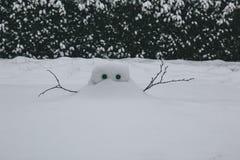 Schneebau während des Sturms Emma, alias das Tier vom Osten Lizenzfreie Stockbilder