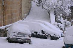 Schneebedeckte Autos und Vegetation Stockfotografie