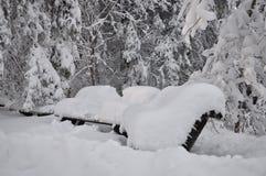 Schneebedeckte Bänke im Park Stockbilder