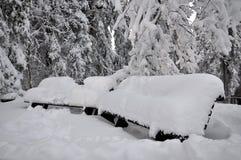 Schneebedeckte Bänke im Park Lizenzfreie Stockbilder
