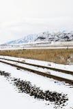Schneebedeckte Bahnen stockfotografie