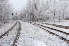 Schneebedeckte Bahnstrecken stockbild