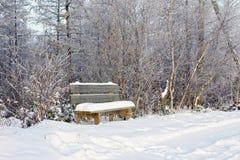 Schneebedeckte Bank durch Waldweg Stockbilder