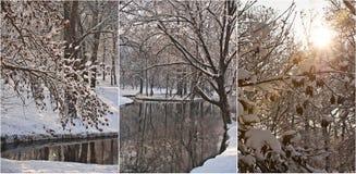 Schneebedeckte Baumaste am sonnigen kalten Wintertag Schöner Winter gestaltet im Wald, mit Schnee und gefrorenem Fluss landschaft Stockfotografie