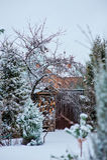 Schneebedeckte Gartenansicht des Winters mit Holzhalle und -zaun Stockfoto