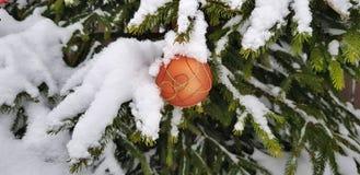 Schneebedeckte helle und mehrfarbige Weihnachtsbaumdekorationen auf einem schneebedeckten Baum des neuen Jahres stockfoto