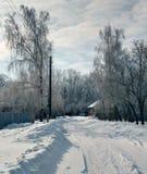 Schneebedeckte ländliche Straße stockbilder