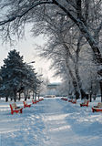 Schneebedeckte Landschaft des schönen Winters Lizenzfreie Stockfotografie