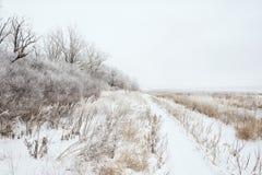 Schneebedeckte Landschaft des Winters Stockfoto